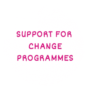 Support for Change Programmes